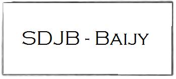 Logo sdjb baijy